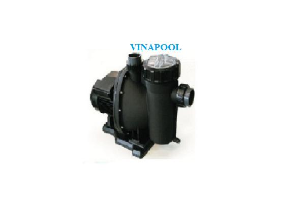 VianPool bom-loc-nuoc-trent-2hp
