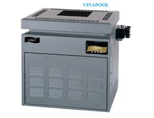 Lite 2 LD 132 M / J Natural Gas Heater