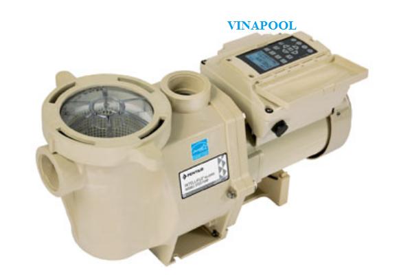 VianPool may-bom-intelliflo-i1