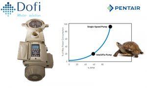 máy bơm hồ bơi tốc độ chậm IntelliFloXF Variable Speed