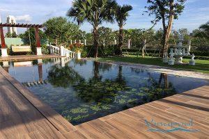 VianPool Xây dựng và hoàn thiện hồ bơi Villa Chateau Phú Mỹ Hưng